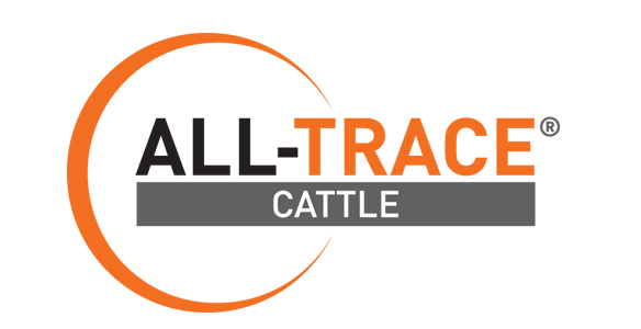 ALL-TRACE CATTLE